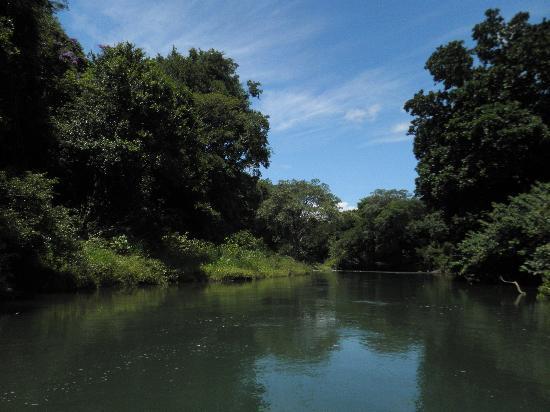 Blue River Resort & Hot Springs: Safari River Trip