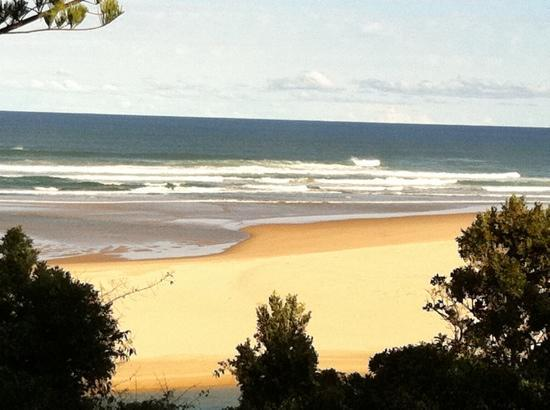 Sawtell Beach Holiday Park: view from cabin 16