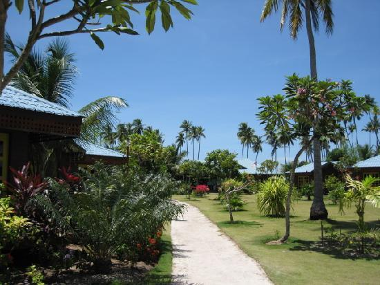 Borneo Divers Mabul Island Resort: Lovely Gardens
