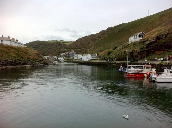 The Wellington Hotel: Looking back into Boscastle from the harbour