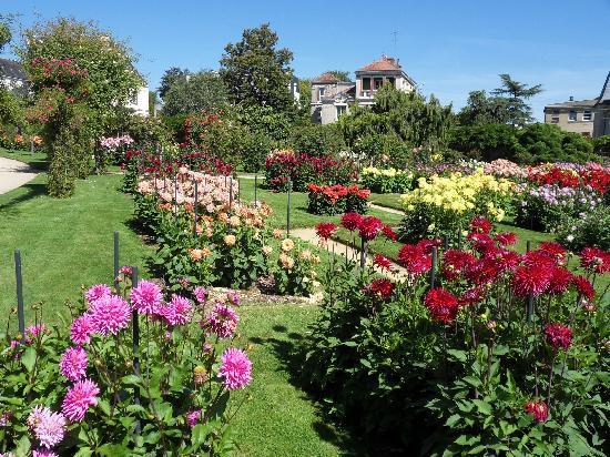 Parc du Thabor : Rose and Dahila garden