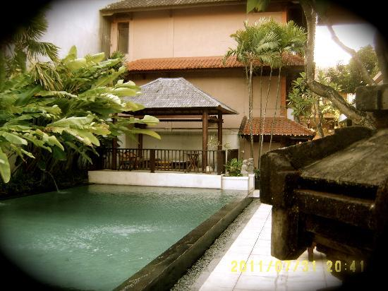 Bali Summer Hotel : the pool