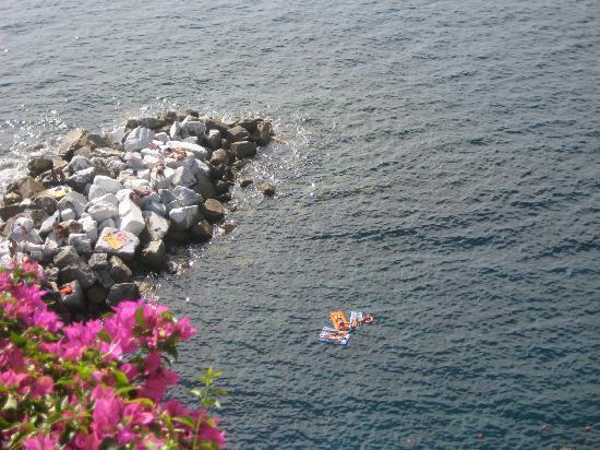 Luxury Apartments Manarola: Great swimming in Manarola
