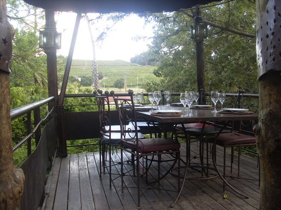 moyo Stellenbosch: top of the tree table