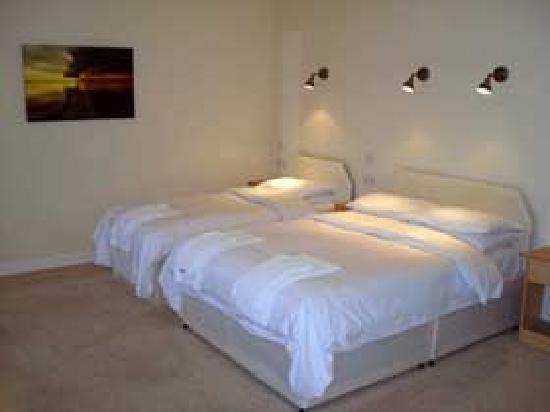 Hillside Hotel Bar and Restaurant: Room at the Hillside Hotel Dunbar