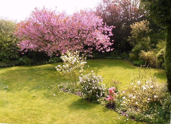 Grange Farmhouse Bed and Breakfast: Spring