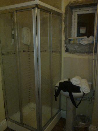 Dun Aoibhinn House: shower and sink