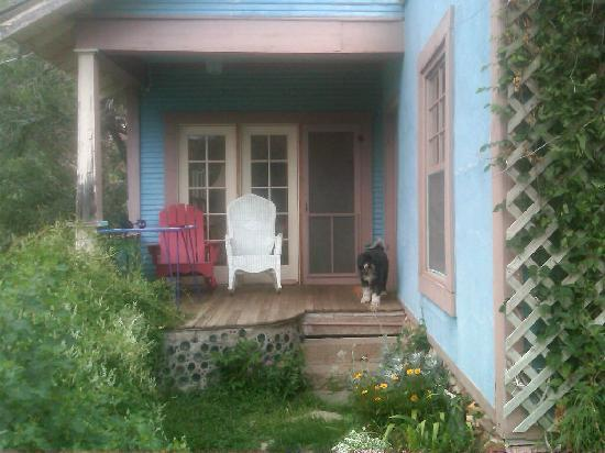 My fluffy dog definitely approves of the Sleepy Dog Guest House!