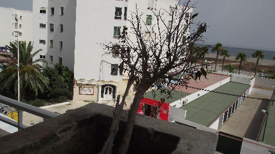 Gran Hotel Elba Motril: plantas de la terraza del hotel