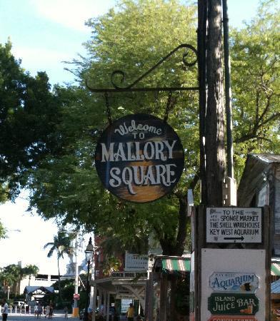 ميدان مالوري