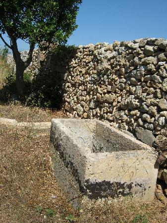 Tenuta Litta: muur anno 1250