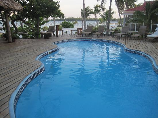 Turneffe Island Resort: The Pool