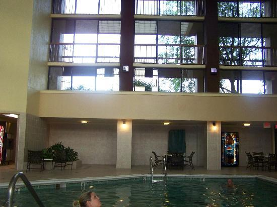Shular Inn Hotel: the pool has always been my kids fave,,,, my kids played here and now my grandkids