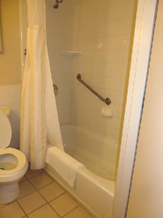 Hilton Garden Inn Ithaca: The Bathroom