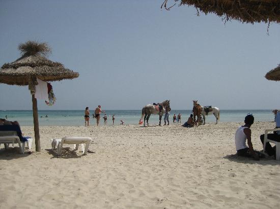 Iberostar Mehari Djerba: La plage de l'hôtel