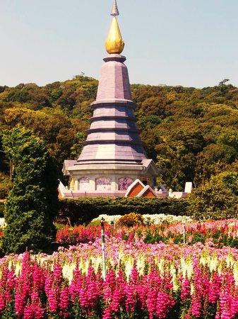 Doi Inthanon National Park, Thailand: Im Vordergrund des Chedis  wieder Blumen