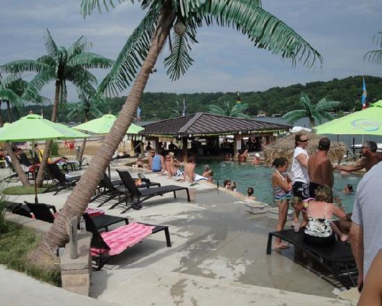 Coconuts Caribbean Beach Bar & Grill: Coconuts pool 2