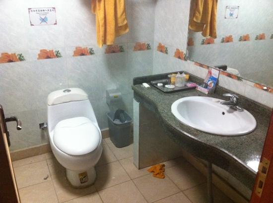 Damxung Pema Hotel: Toilet with paper bin...