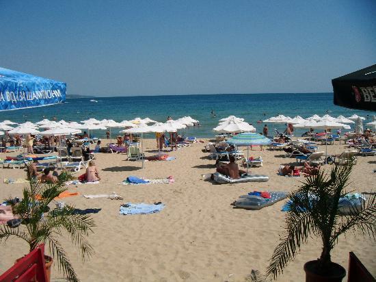 MPM Hotel Boomerang: Beach
