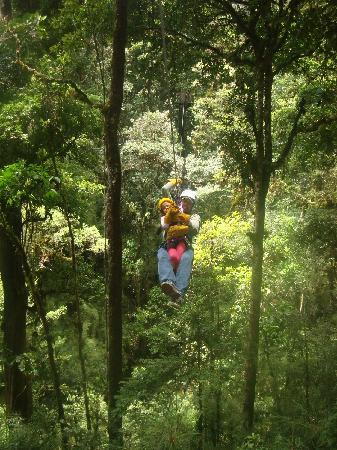 Canopy Tour at Hotel Trogon Lodge : My 4 year old had a blast on the tour.