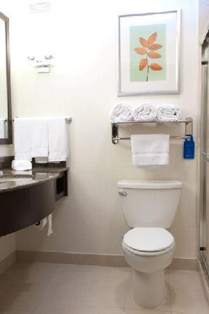 هيلتون جاردن إن سان برناردينو: Bathroom.