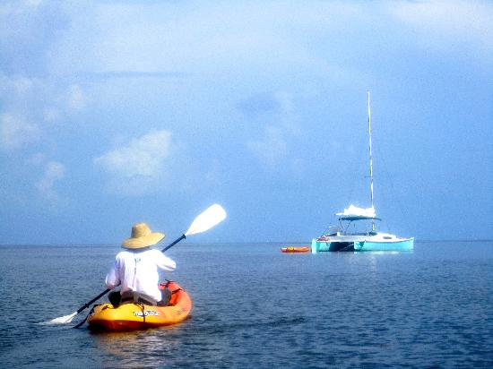Key West Eco Tours: Captain George and the Java Cat