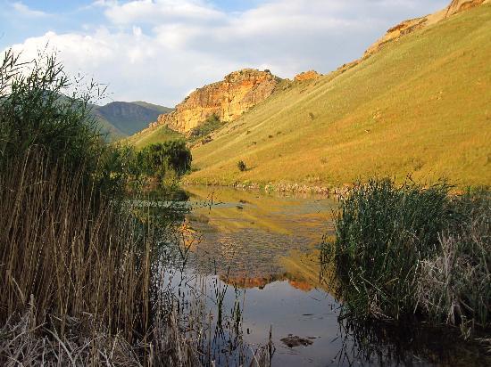 Kiara Lodge: The dam at Kiara Resort
