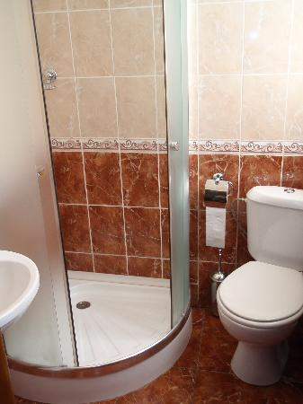 Hotel Magnat: shower and toilet