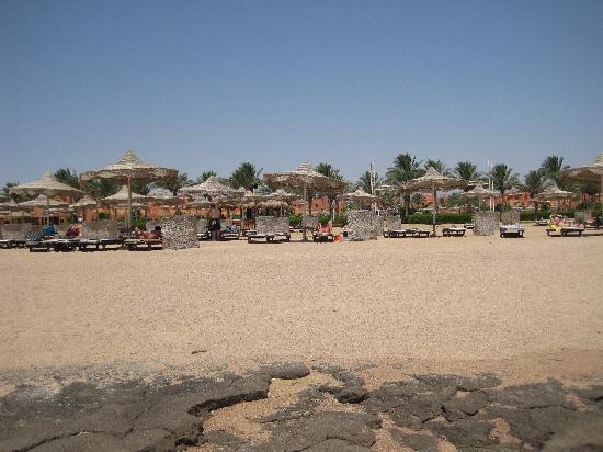Coral Sea Waterworld Resort: The beach