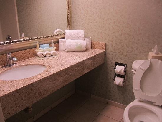 Holiday Inn Express Exton - Lionville: Bathroom
