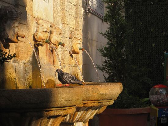 La Dolce Vita Pizzo - Pizzo Tours: Pizzo Fountain