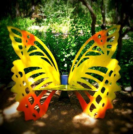 Zilker Botanical Garden: Bench Near Doug Blachly Butterfly Trail And Garden