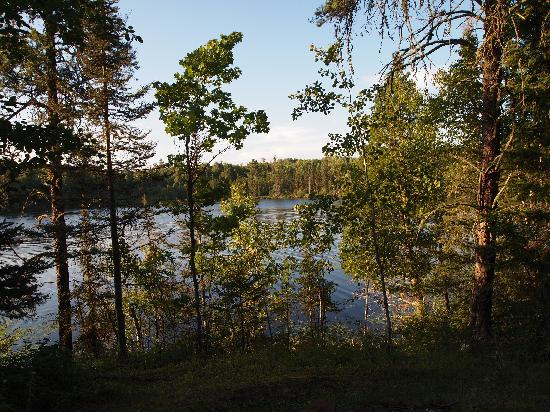 Northernair Lodge: The view of the lake from cabin 3!