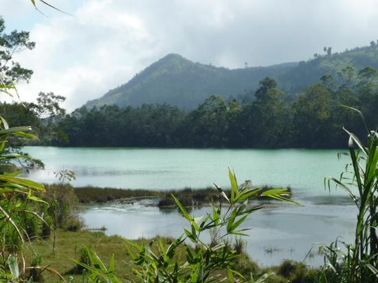 Dieng Plateau - Telaga Warna  (Warna Lake)
