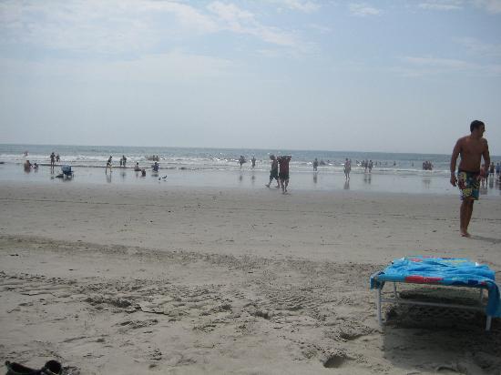 The Crusader Oceanfront Family Resort: beach