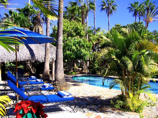 Hacienda Todos Los Santos: Pool
