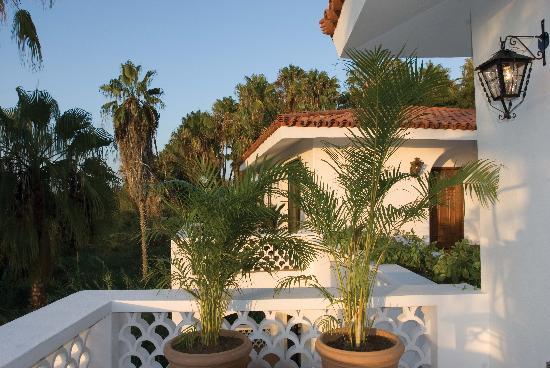Hacienda Todos Los Santos: Terrace