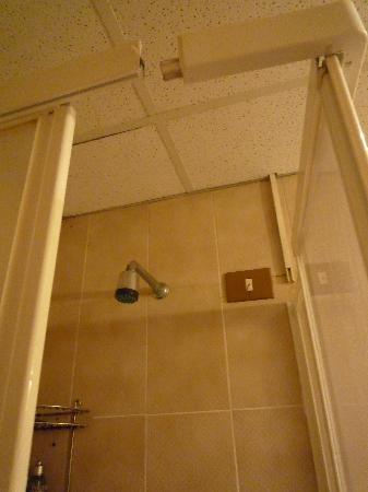Hotel Pavia: Damaged Shower Door