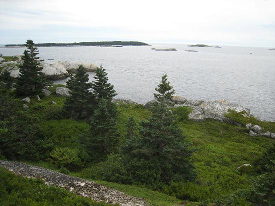East Coast Outfitters Sea Kayaking: View from the picnic spot