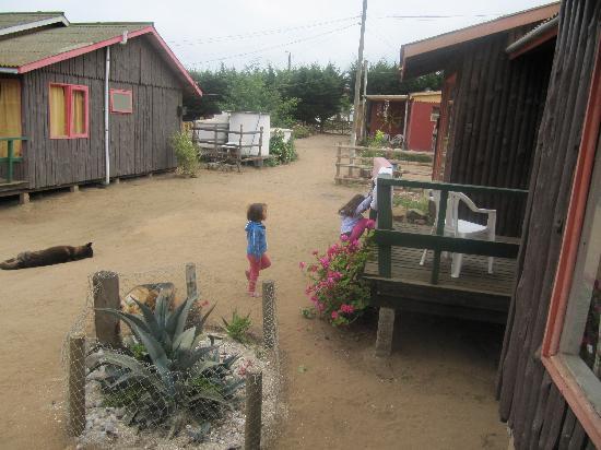 Bosquemar Quintay: los bungalows
