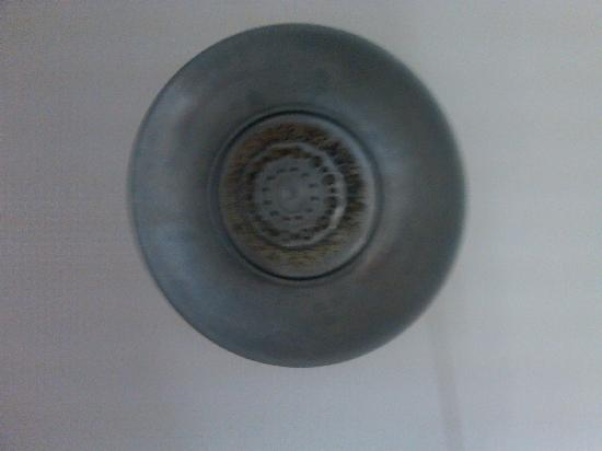 Holiday Inn Express Cleveland Airport - Brook Park: dirty showerhead-sorry