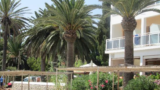 Hotel Ses Figueres: ambiente lato mare