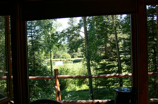 Valle Escondido, Nuevo Mexico: view of pond from guest house front window