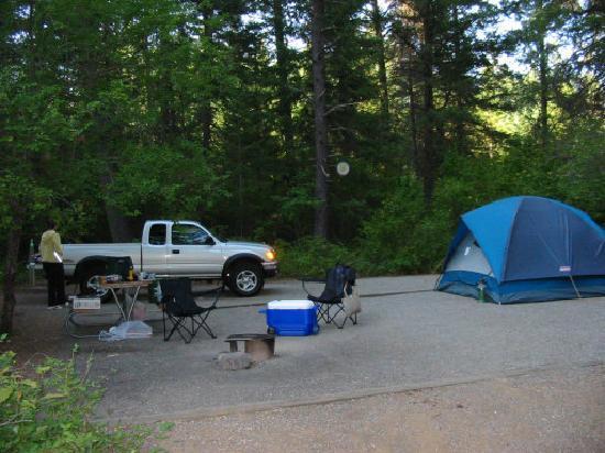 Farragut State Park : Site Shot