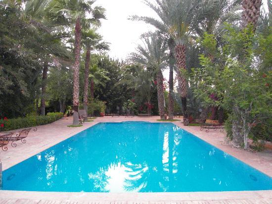 Dar Shama : pool