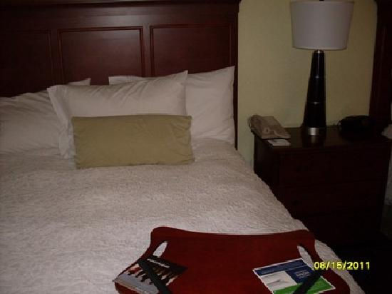 Hampton Inn & Suites San Antonio / Northeast I35: bed