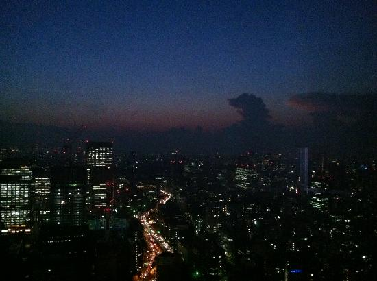 Mandarin Oriental, Tokyo: The view from the room at night