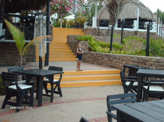 Guayoyo Cafe: Vista desde la parte mas baja