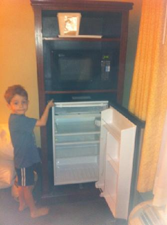 Quality Inn & Suites: fridge and microwave were a nice touch.