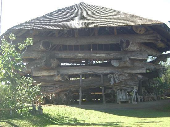 San Rafael Hotel: laripuka